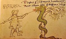 «Метаморфозы» Овидия